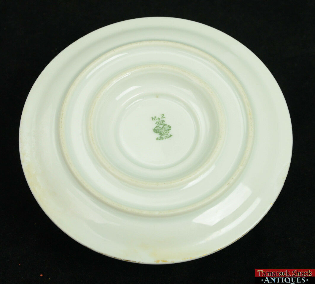 Hand Painted Plate Mz Austria