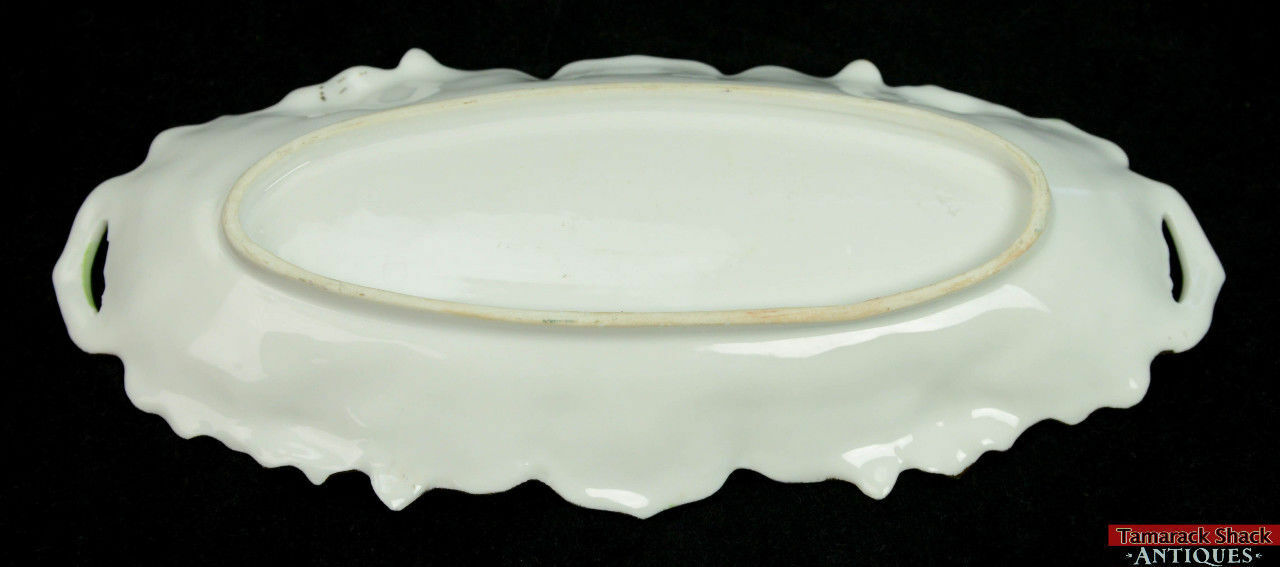 RS-Prussia-Porcelain-Handpainted-Oblong-Relish-Dish-2-Open-Handles-Scalloped-Rim-361443399729-3.jpg